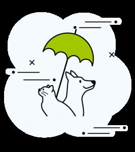 Icone avec un chien et un chat protégé sous un parapluie