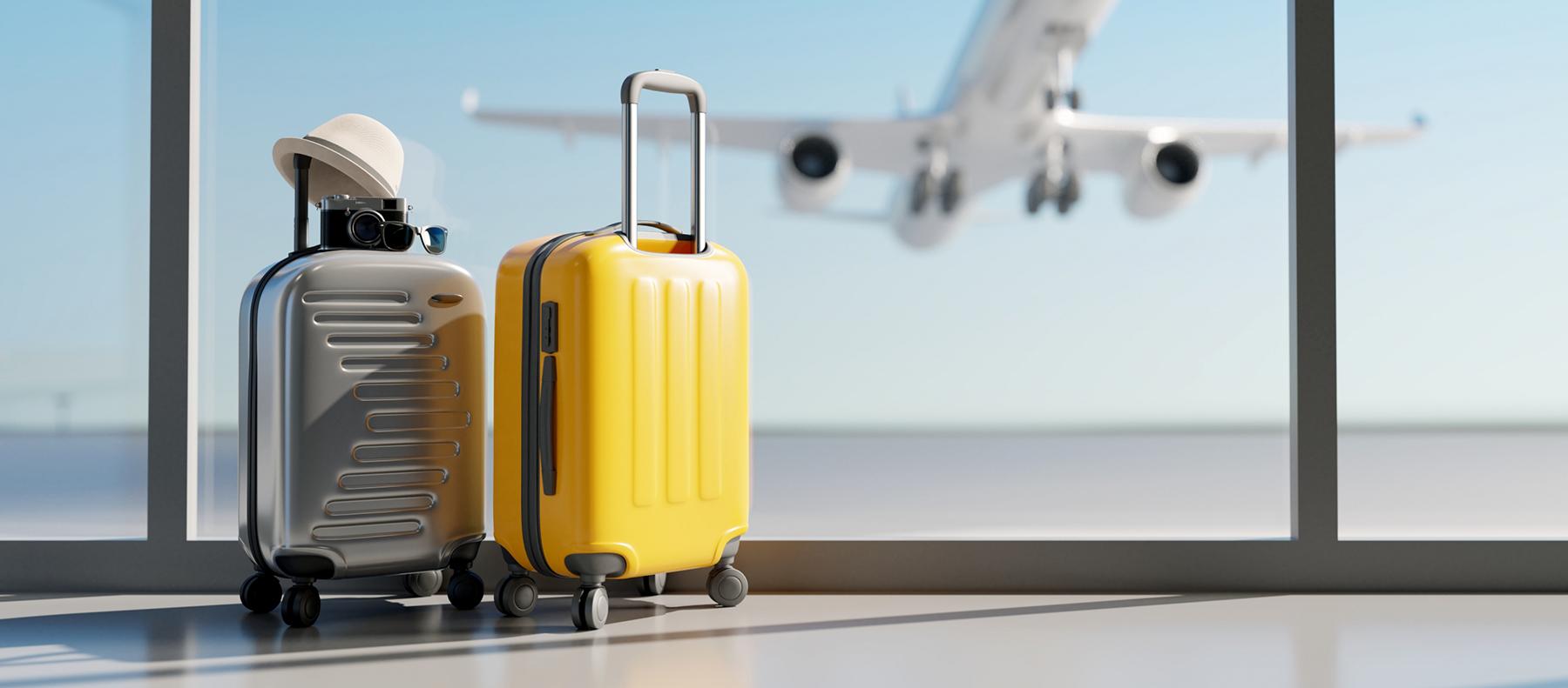 deux valises et un avion